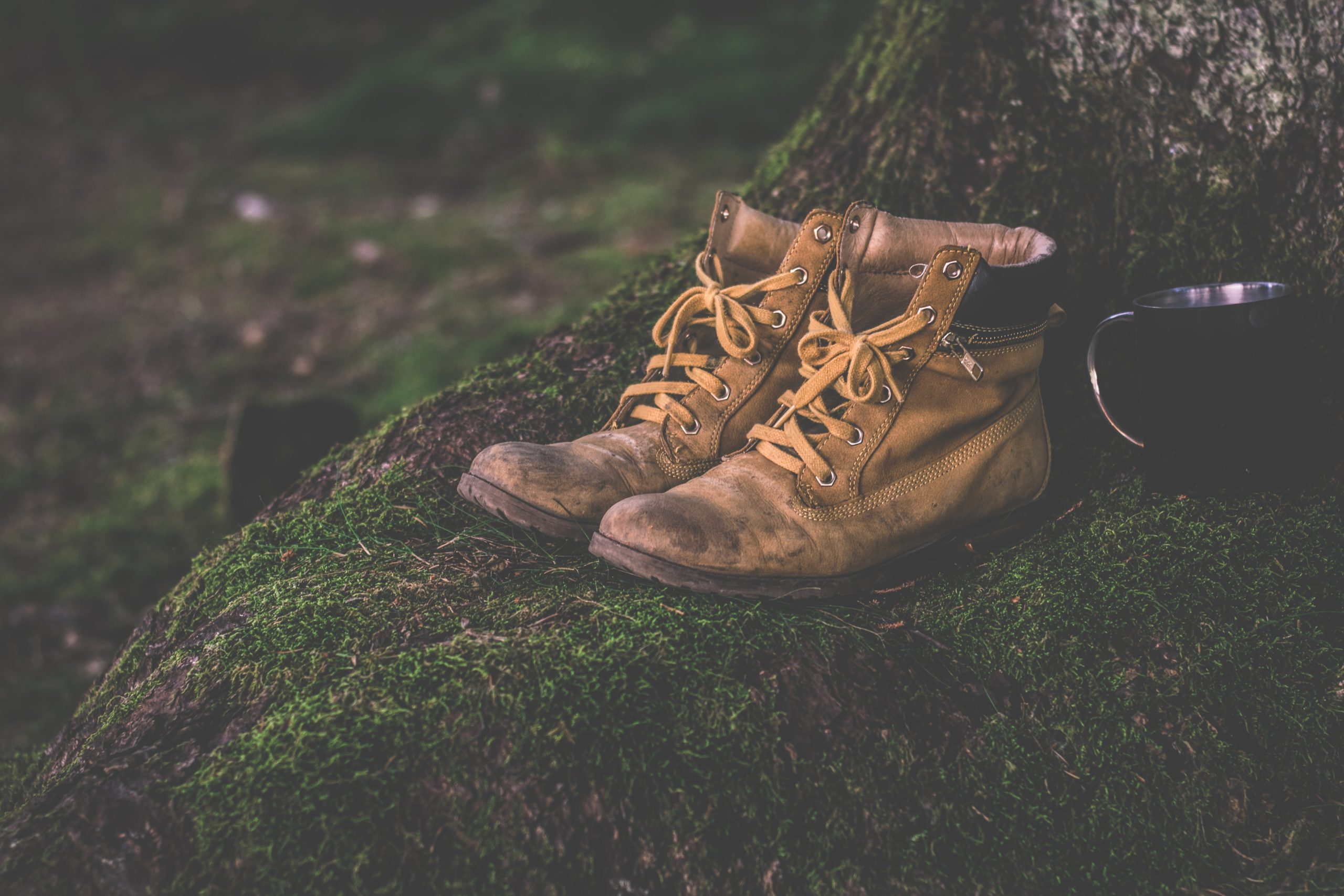 Do You Know The Different Types Of Hiking Boots?
