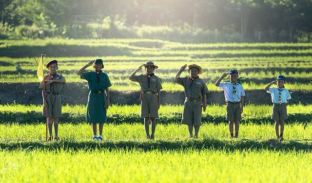 group of scout